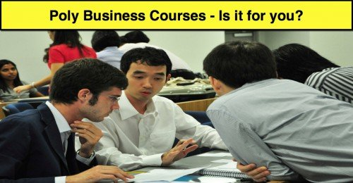 Poly Business Course